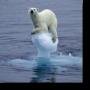 Cambiamenti climatici, terra al collasso entro un secolo