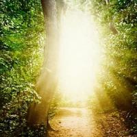 La vita oltre la vita: gli esseri di luce e una nuova comprensione dell'amore