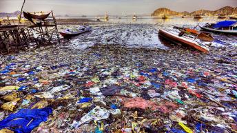 Aiuto, l'oceano conterrà più plastica che pesci!
